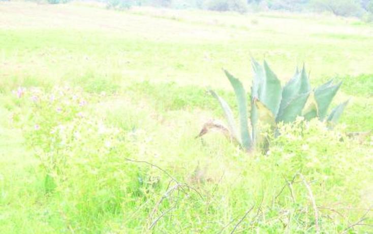 Foto de terreno habitacional en venta en  , san josé tepoxtla, yauhquemehcan, tlaxcala, 2655242 No. 06