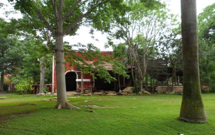 Foto de rancho en venta en, san jose tzal, mérida, yucatán, 1371685 no 01