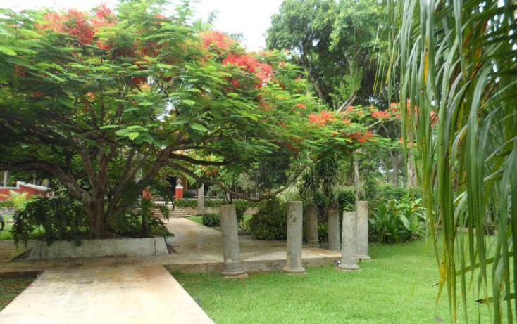 Foto de rancho en venta en, san jose tzal, mérida, yucatán, 1371685 no 09