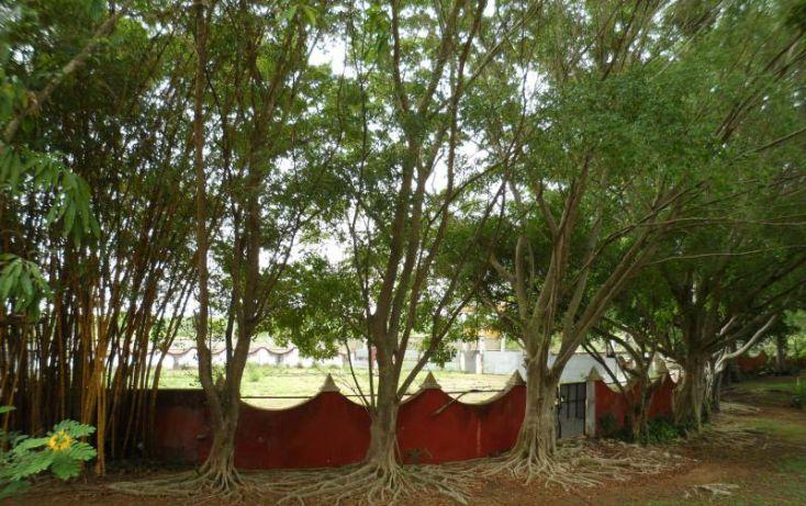 Foto de rancho en venta en, san jose tzal, mérida, yucatán, 1371685 no 39