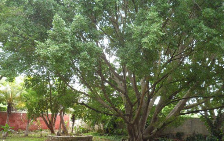 Foto de rancho en venta en, san jose tzal, mérida, yucatán, 1371685 no 49