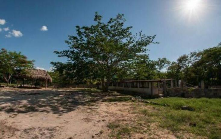 Foto de terreno habitacional en venta en  , san jose tzal, m?rida, yucat?n, 1722526 No. 02