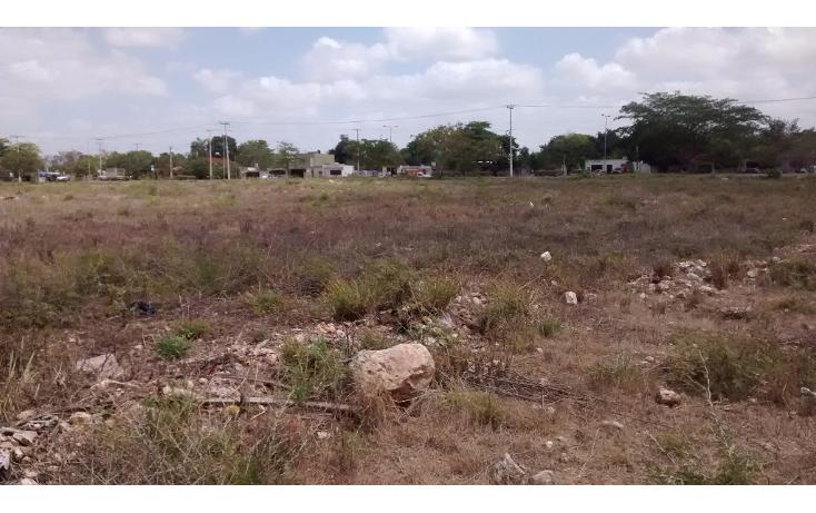 Foto de terreno habitacional en venta en  , san jose vergel, m?rida, yucat?n, 1941703 No. 05