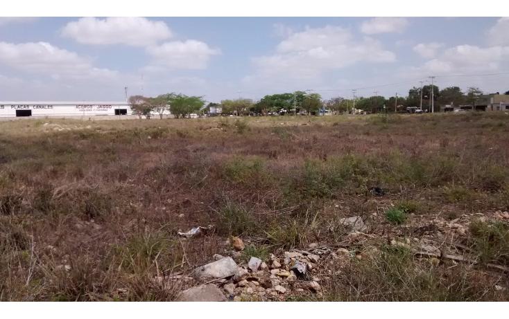 Foto de terreno habitacional en venta en  , san jose vergel, m?rida, yucat?n, 1941703 No. 06