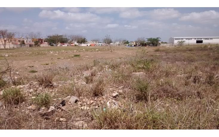 Foto de terreno habitacional en venta en  , san jose vergel, m?rida, yucat?n, 1941703 No. 07