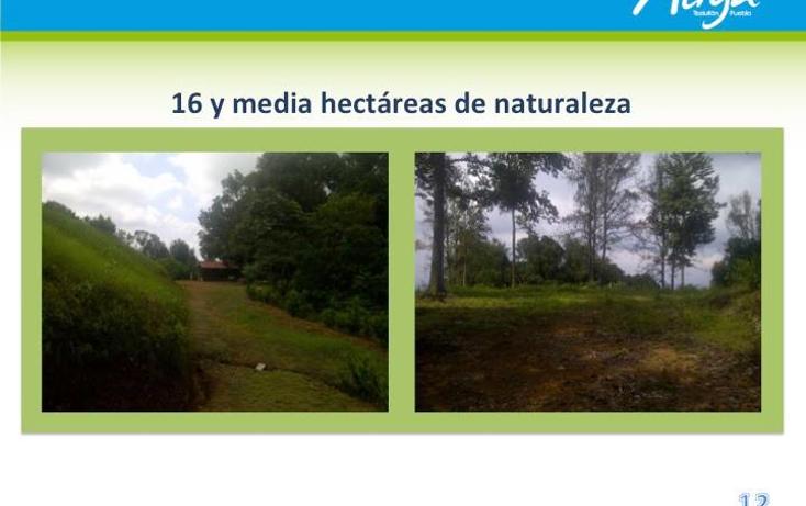 Foto de terreno comercial en venta en  , san juan acateno, teziutlán, puebla, 1127867 No. 07