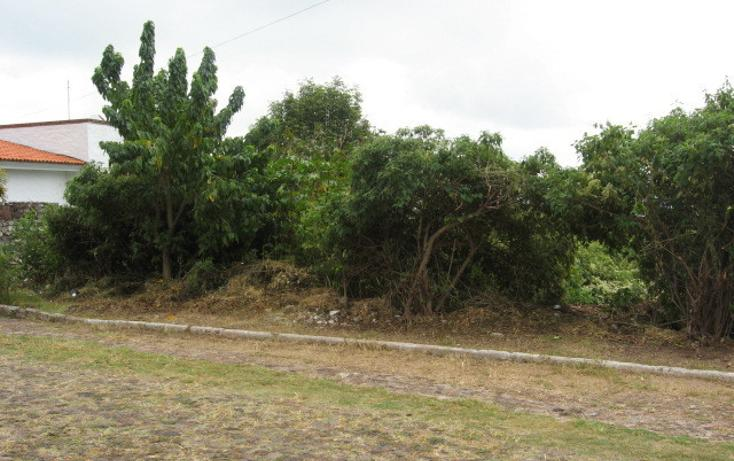 Foto de terreno habitacional en venta en  , san juan cosala, jocotepec, jalisco, 1854168 No. 01