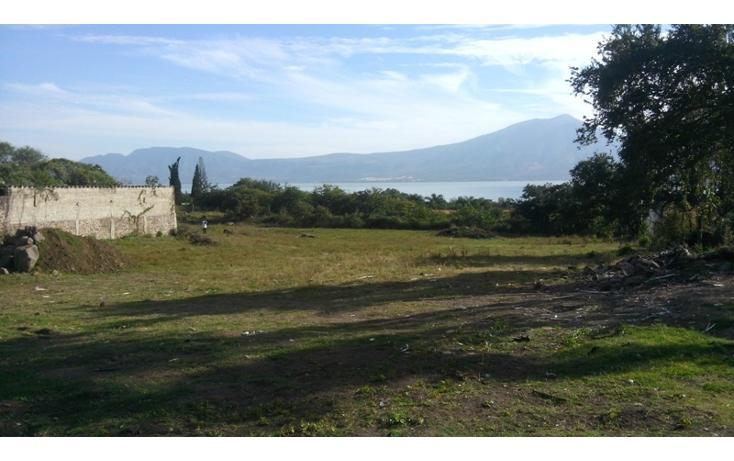 Foto de terreno habitacional en venta en  , san juan cosala, jocotepec, jalisco, 1862708 No. 08