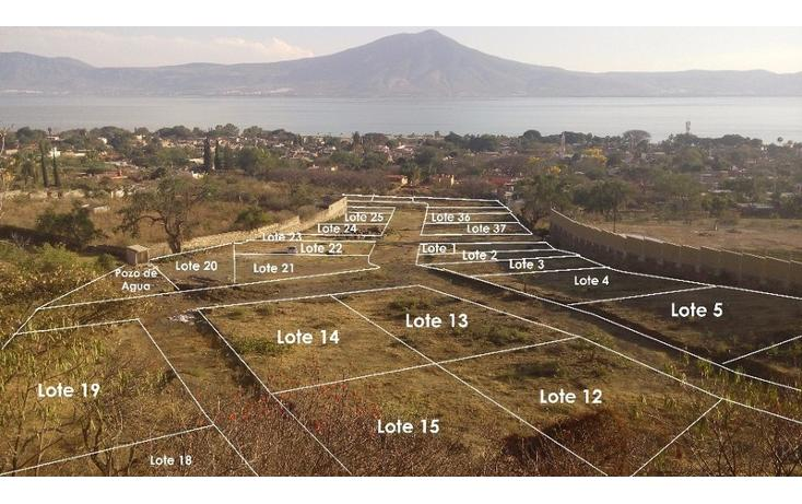 Foto de terreno habitacional en venta en  , san juan cosala, jocotepec, jalisco, 1862714 No. 02