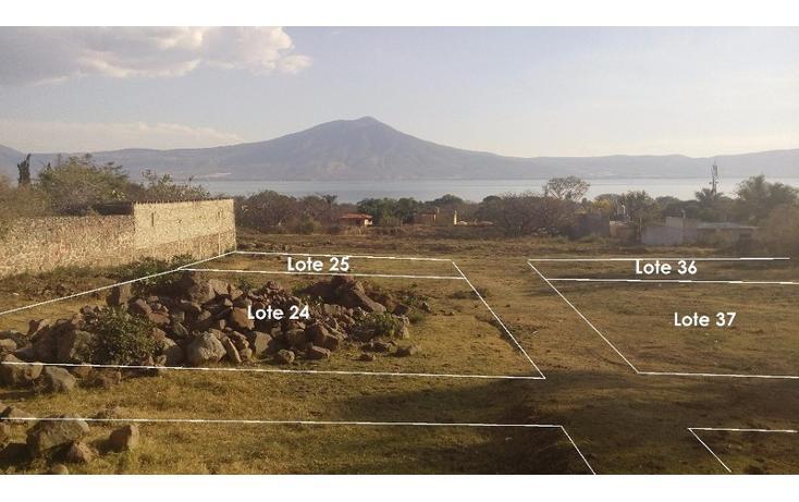 Foto de terreno habitacional en venta en  , san juan cosala, jocotepec, jalisco, 1862714 No. 03