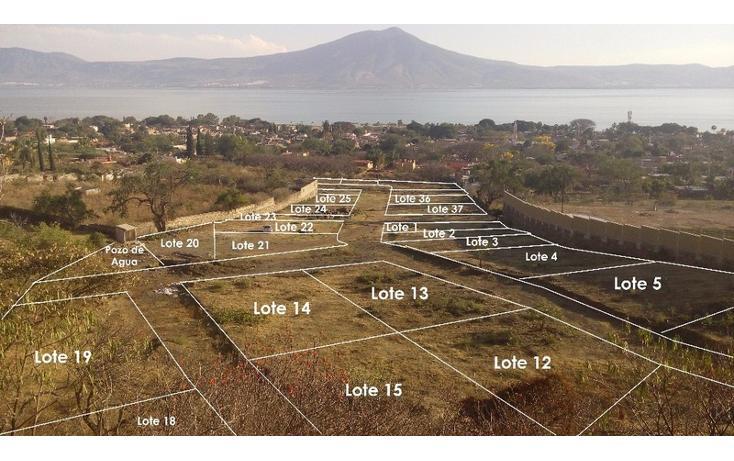 Foto de terreno habitacional en venta en  , san juan cosala, jocotepec, jalisco, 1862720 No. 04