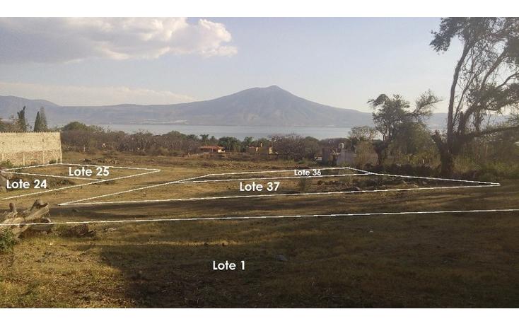Foto de terreno habitacional en venta en  , san juan cosala, jocotepec, jalisco, 1862724 No. 01