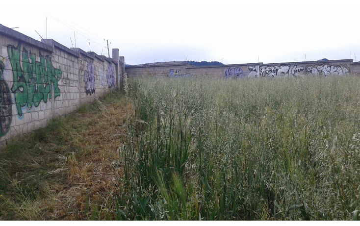 Foto de terreno comercial en venta en  , san juan de las huertas, zinacantepec, méxico, 1614390 No. 04