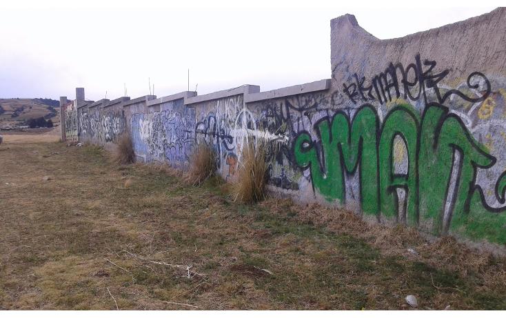 Foto de terreno comercial en venta en  , san juan de las huertas, zinacantepec, m?xico, 1614390 No. 06
