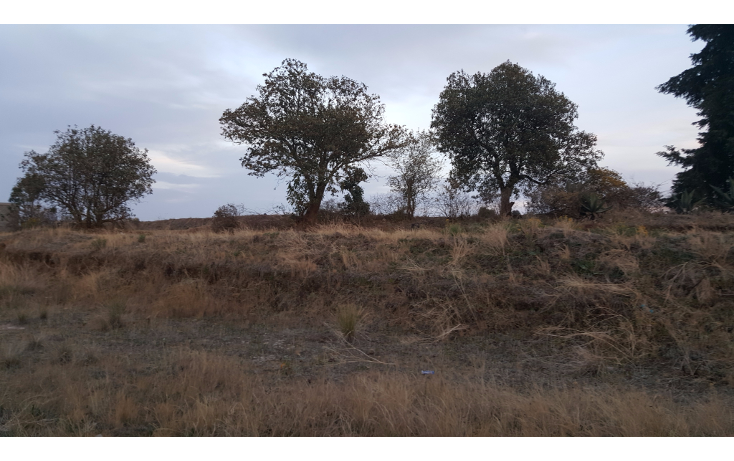 Foto de terreno habitacional en venta en  , san juan de las huertas, zinacantepec, méxico, 1776744 No. 03