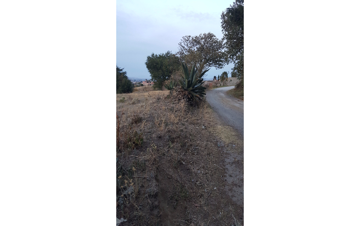 Foto de terreno habitacional en venta en  , san juan de las huertas, zinacantepec, méxico, 1776744 No. 05