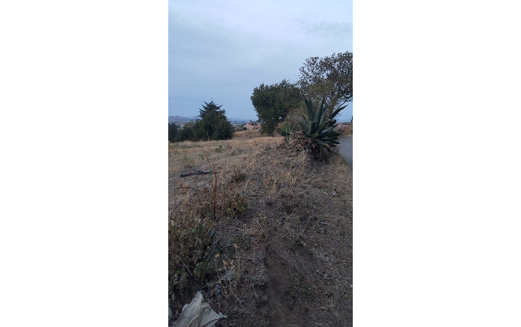 Foto de terreno habitacional en venta en  , san juan de las huertas, zinacantepec, méxico, 1776744 No. 06