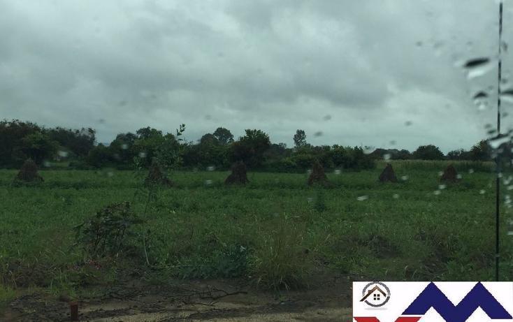 Foto de terreno comercial en venta en  , san juan de otates, león, guanajuato, 1731656 No. 02