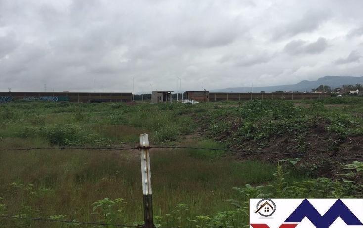 Foto de terreno comercial en venta en  , san juan de otates, león, guanajuato, 1731656 No. 03