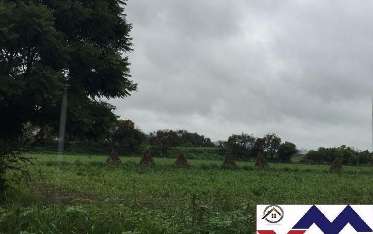 Foto de terreno comercial en venta en  , san juan de otates, león, guanajuato, 1731656 No. 04