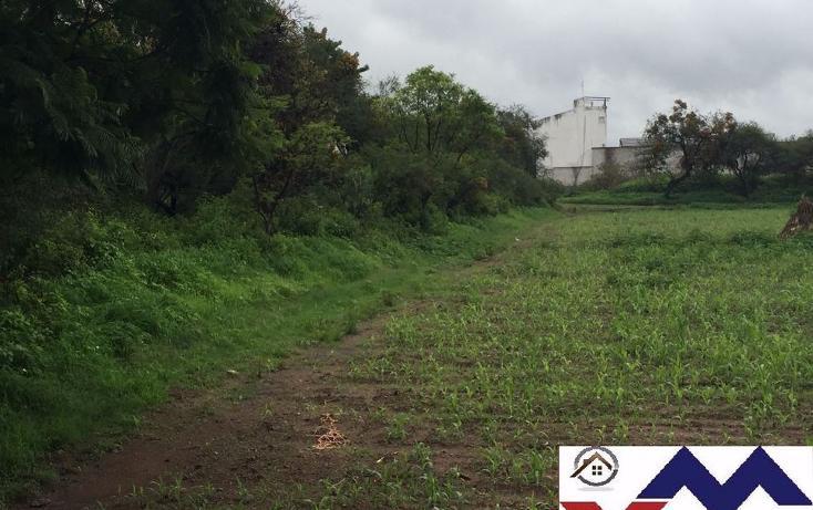 Foto de terreno comercial en venta en  , san juan de otates, león, guanajuato, 1731656 No. 06