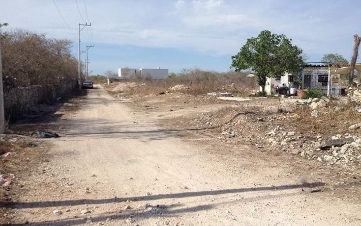 Foto de terreno comercial en renta en  , san juan grande, m?rida, yucat?n, 1171485 No. 04