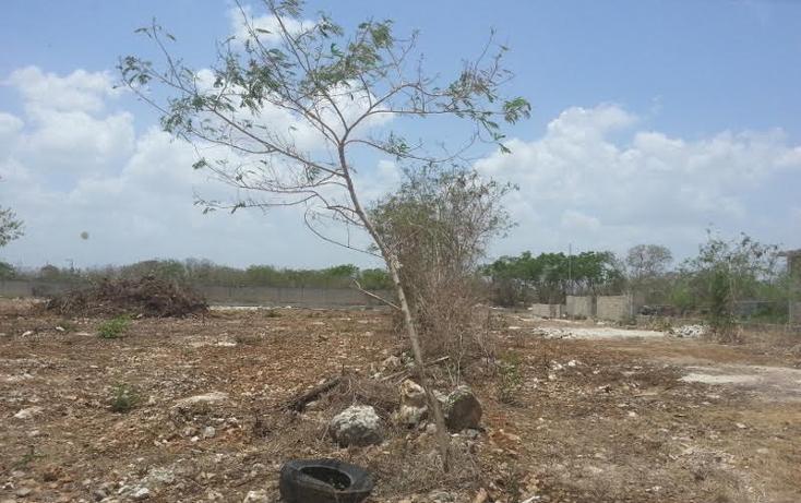 Foto de terreno habitacional en venta en  , san juan grande, mérida, yucatán, 1804500 No. 03