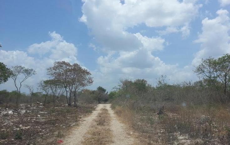 Foto de terreno habitacional en venta en  , san juan grande, mérida, yucatán, 1804500 No. 04