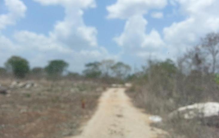 Foto de terreno habitacional en venta en  , san juan grande, mérida, yucatán, 1804500 No. 09