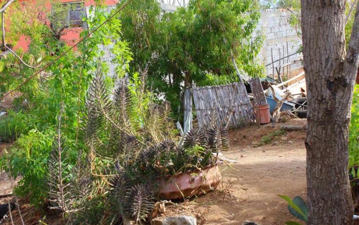 Foto de casa en venta en  , san juan, la paz, baja california sur, 1729654 No. 04