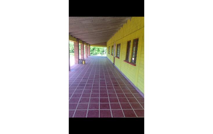 Foto de terreno habitacional en venta en  , san juan piaxtla, izúcar de matamoros, puebla, 1959450 No. 03