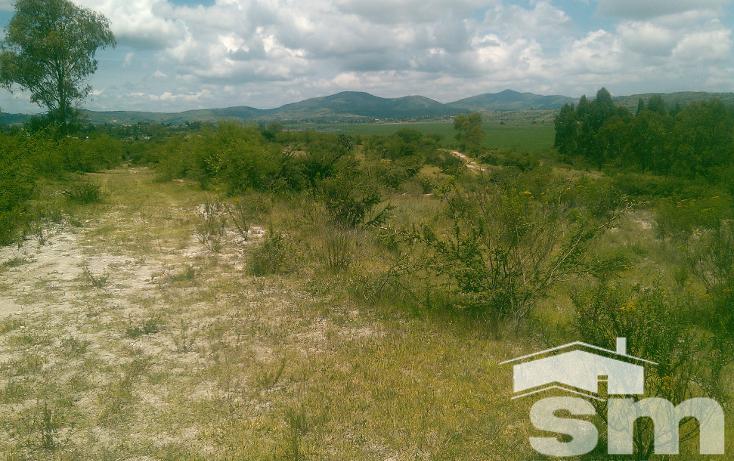 Foto de terreno comercial en venta en  , san juan soto, puebla, puebla, 1123107 No. 08