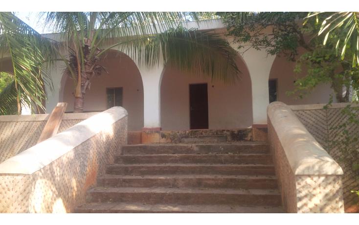 Foto de rancho en venta en  , san juan tekax, tekax, yucatán, 1294271 No. 06