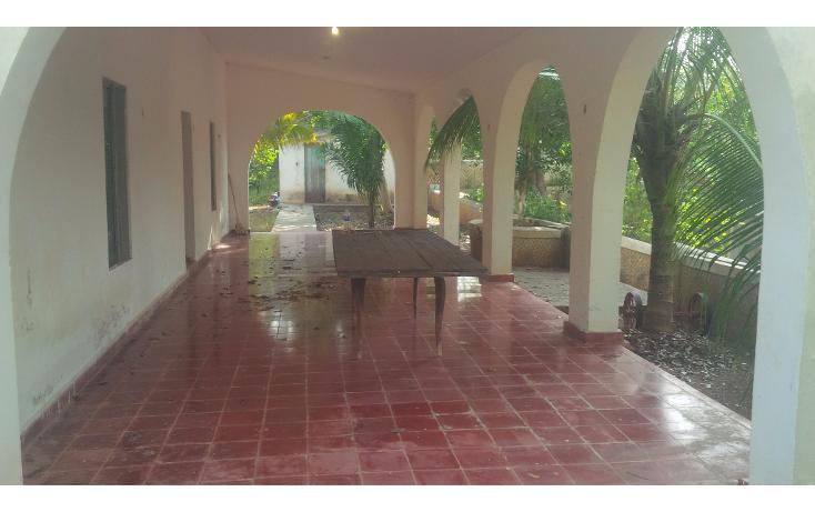 Foto de rancho en venta en  , san juan tekax, tekax, yucatán, 1294271 No. 07