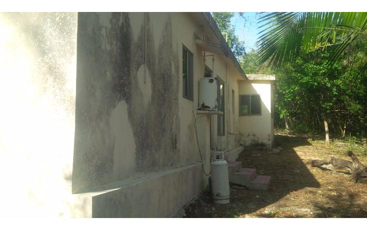 Foto de rancho en venta en  , san juan tekax, tekax, yucatán, 1294271 No. 10