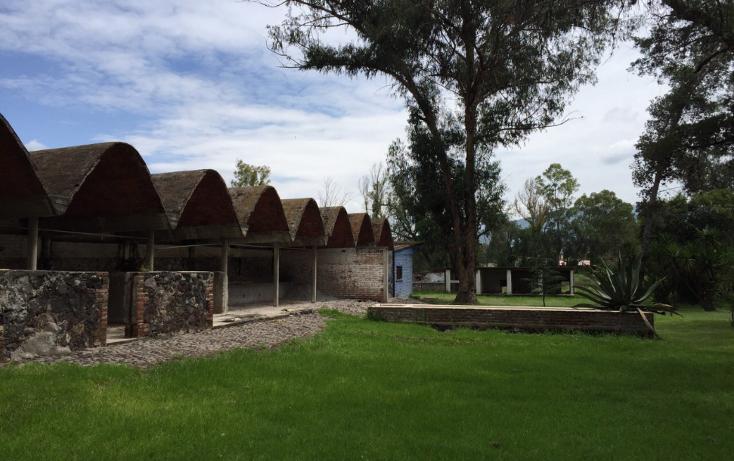 Foto de rancho en venta en  , san juan teotihuacan de arista, teotihuacán, méxico, 1173731 No. 05