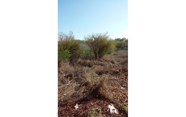 Foto de terreno habitacional en venta en  , san juan, tequisquiapan, querétaro, 1116477 No. 04