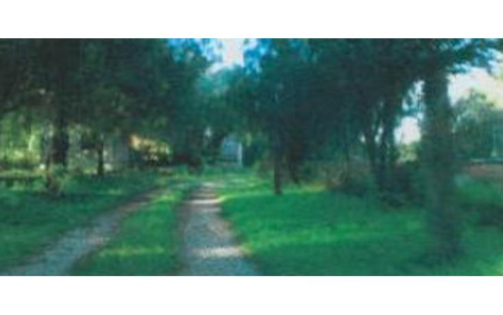 Foto de terreno habitacional en venta en  , san juan, tequisquiapan, quer?taro, 1637790 No. 05