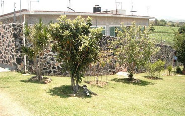 Foto de casa en venta en  , san juan texcalpan, atlatlahucan, morelos, 1478619 No. 17