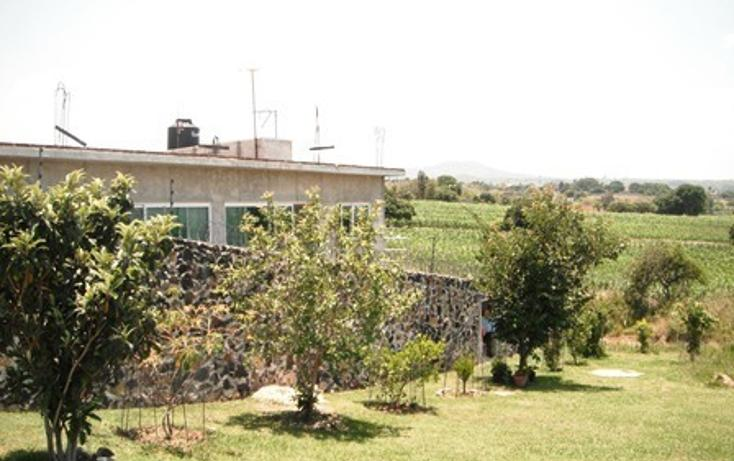 Foto de casa en venta en  , san juan texcalpan, atlatlahucan, morelos, 1478619 No. 21