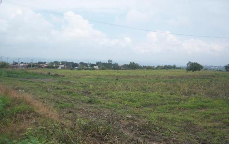 Foto de terreno habitacional en venta en  , san juan texcalpan, atlatlahucan, morelos, 1745559 No. 03