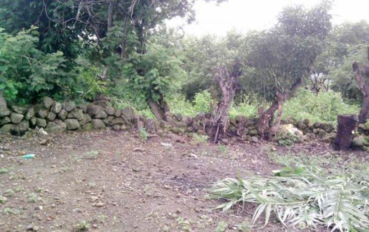 Foto de terreno habitacional en venta en, san juan texcalpan, atlatlahucan, morelos, 1745579 no 03