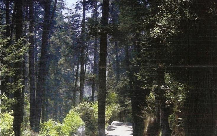 Foto de terreno habitacional en venta en  , san lorenzo acopilco, cuajimalpa de morelos, distrito federal, 1636634 No. 01