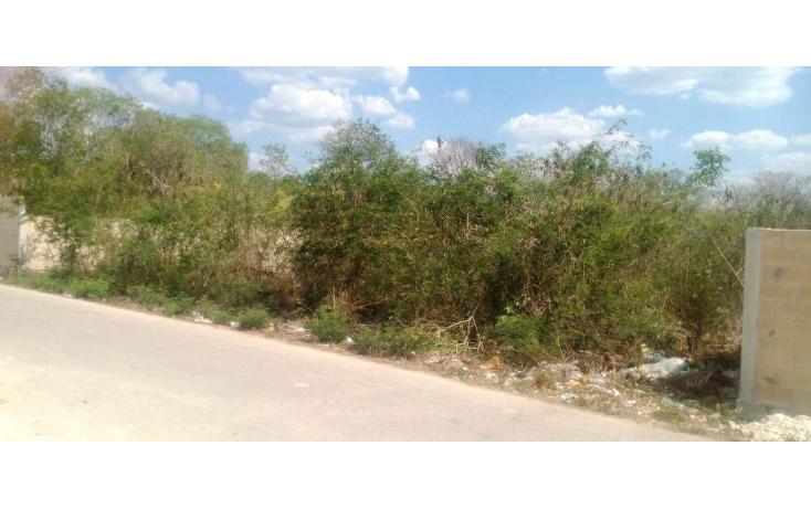 Foto de terreno habitacional en venta en  , san lorenzo, umán, yucatán, 1092071 No. 01