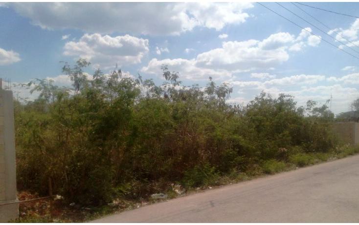 Foto de terreno habitacional en venta en  , san lorenzo, umán, yucatán, 1092071 No. 06