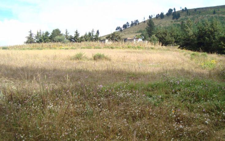Foto de terreno habitacional en venta en, san luis mextepec, zinacantepec, estado de méxico, 1492437 no 09