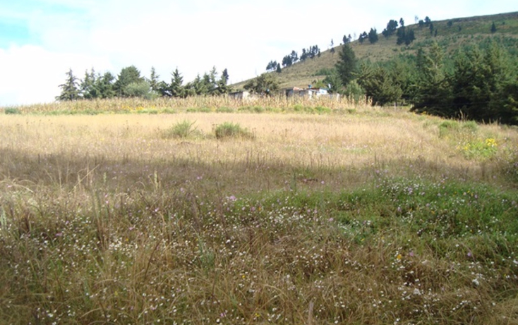 Foto de terreno habitacional en venta en  , san luis mextepec, zinacantepec, méxico, 1492437 No. 09