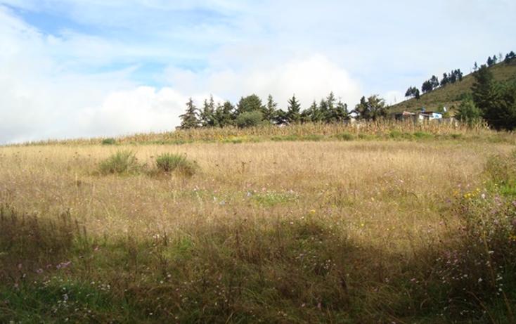 Foto de terreno habitacional en venta en  , san luis mextepec, zinacantepec, méxico, 1492437 No. 17