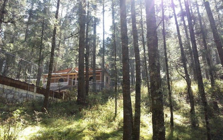 Foto de terreno habitacional en venta en  , san luis, mineral del monte, hidalgo, 1545944 No. 02