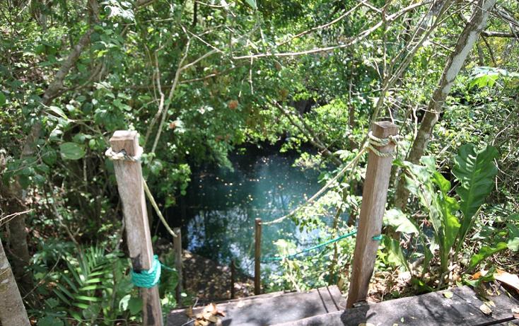 Foto de terreno habitacional en venta en  , san manuel, tizimín, yucatán, 1298127 No. 02